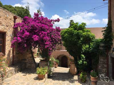 lovely bougainville in the monastery of Kremasta on the hill side above the town of Neapoli