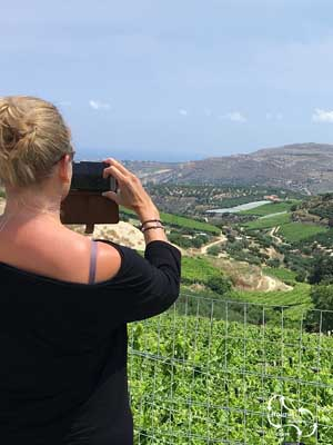 amazing views over the vineyards in the hill sides south of Iraklio.