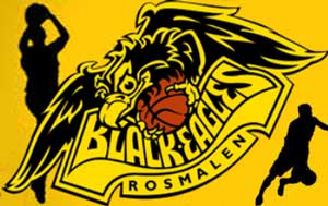 logo of Basketbal club Black Eagles in Rosmalen