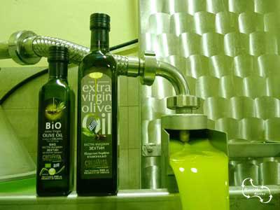 Olijven van kreta zorgen voor een kwalitatief, hoogwaardig product - extra virgin olive oil