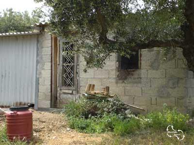 Een metoxi is een klein huisje op een stuk land in Kreta